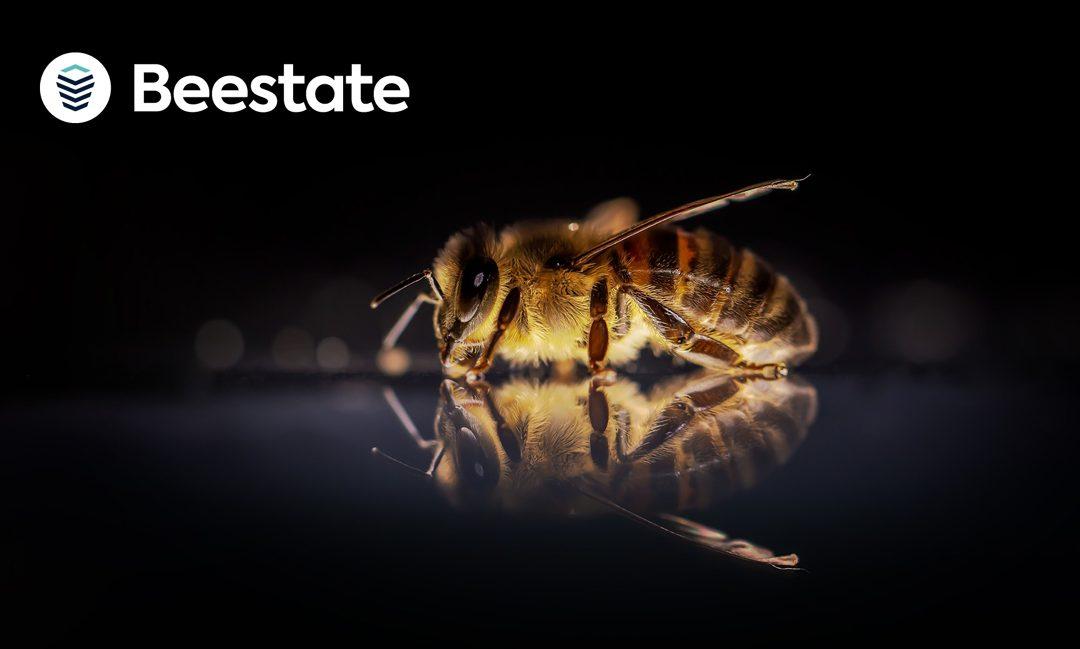 Eine neue Königin im Bienenstaat: PropTech mischt mit Beestate® den FM-Einkauf auf